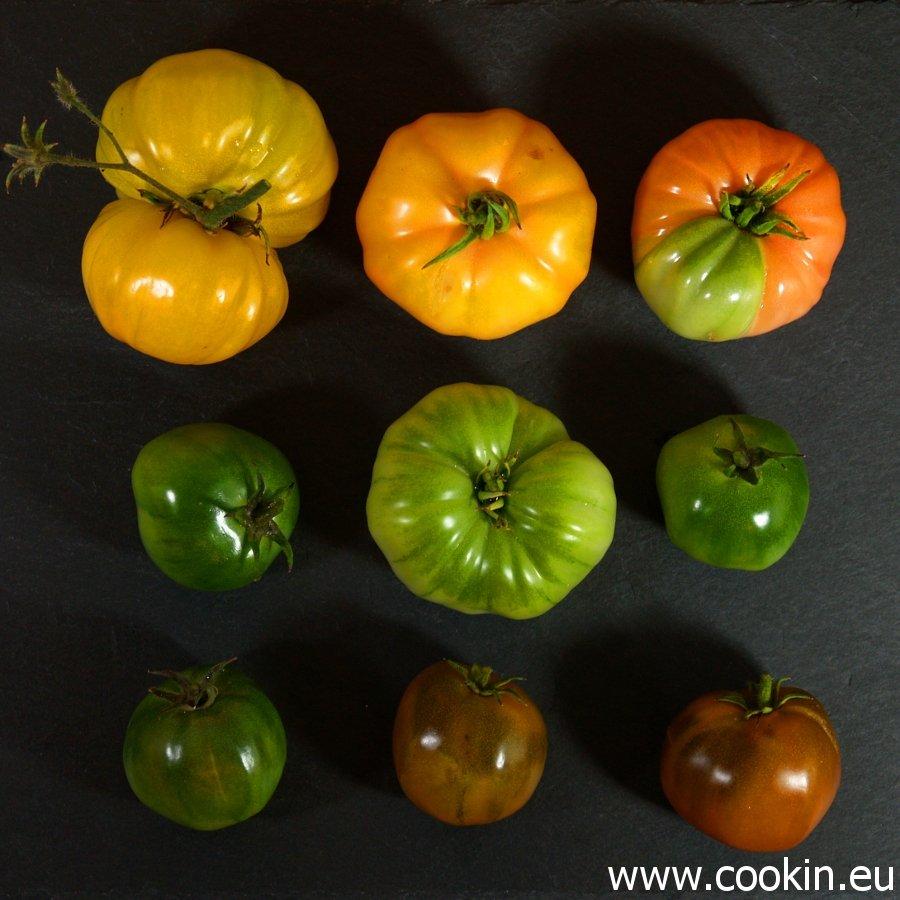 Unreife Tomaten quadratisch 900 2