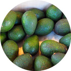 avocado-rund-900