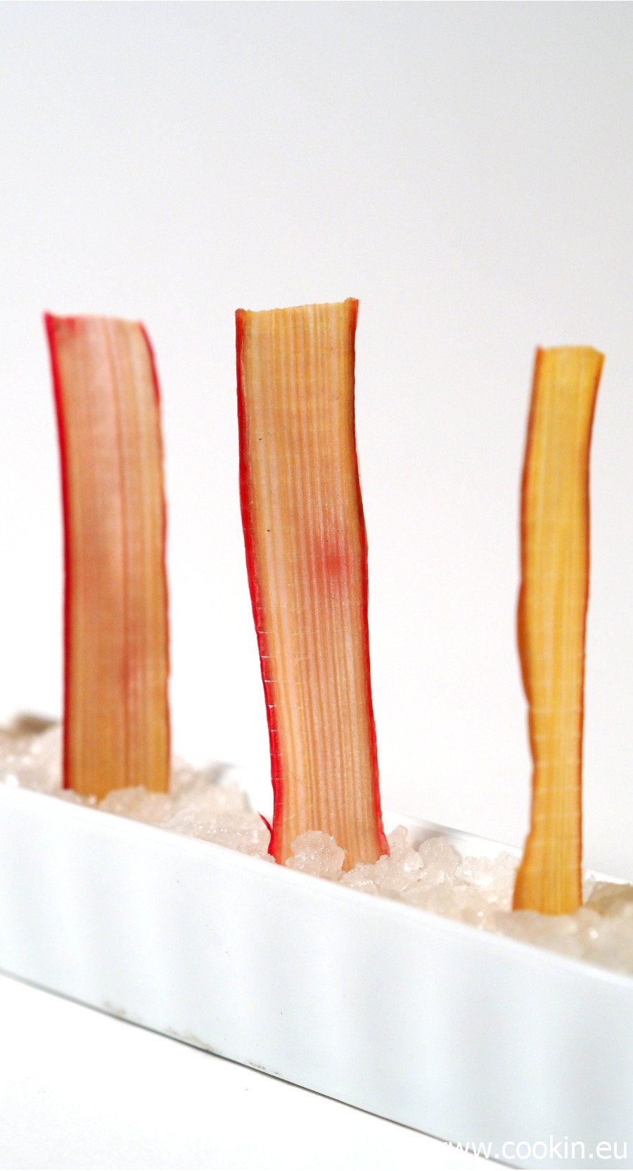 rhabarber-chips-5-900-hk